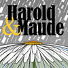 Harold and Maude Title